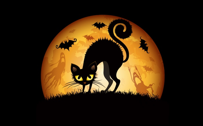 6970012-halloween-cat-art.jpg